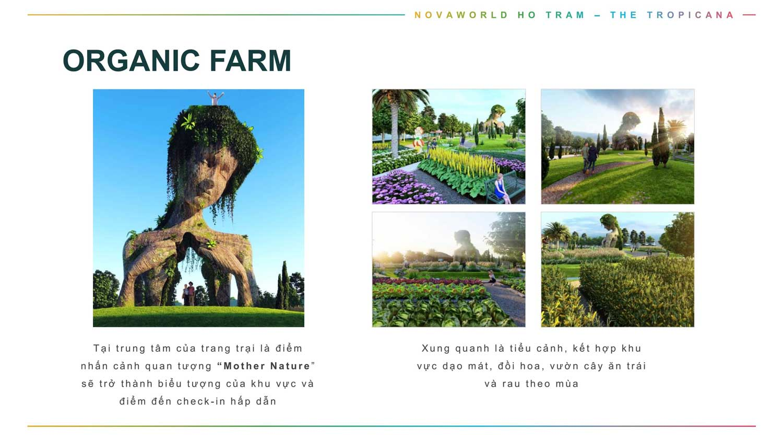Tiện ích Tropicana Oranic Farm1