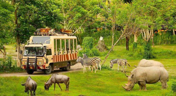 Vườn thú hoang dã Safari NovaWorld Hồ Tràm